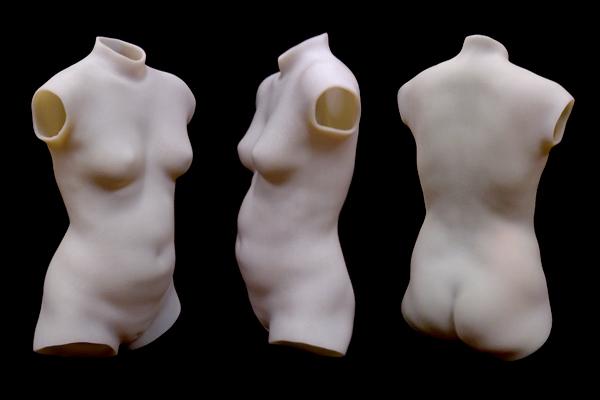 3D bodyscan torso